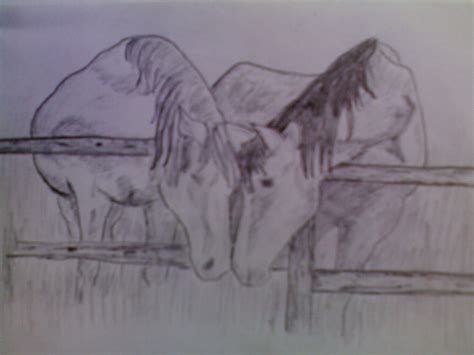 Sketches Horses by Pencil Sketches Painting Sketch Of