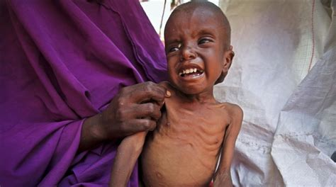 la gran hambruna en la devastadora sequ 237 a amenaza con una gran hambruna en somalia