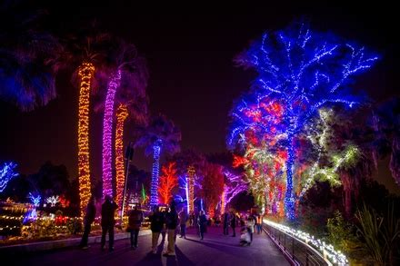 zoo lights phoenix az zoolights at the phoenix zoo in phoenix az groupon