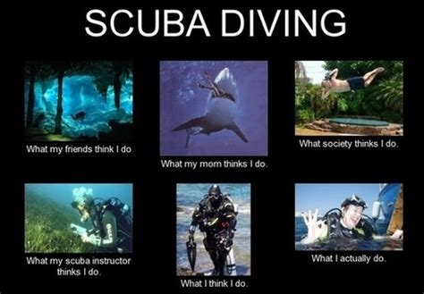 Scuba Diving Meme - scubadiving in what i really do scoop it