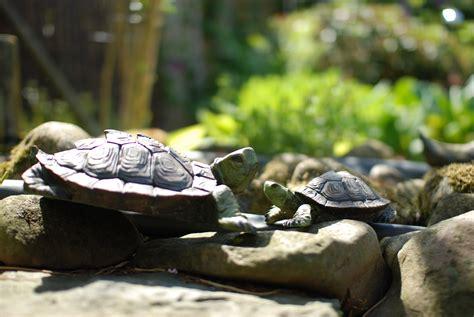 Garden Turtle by Turtle Sculptures In Garden Cc0 Photo