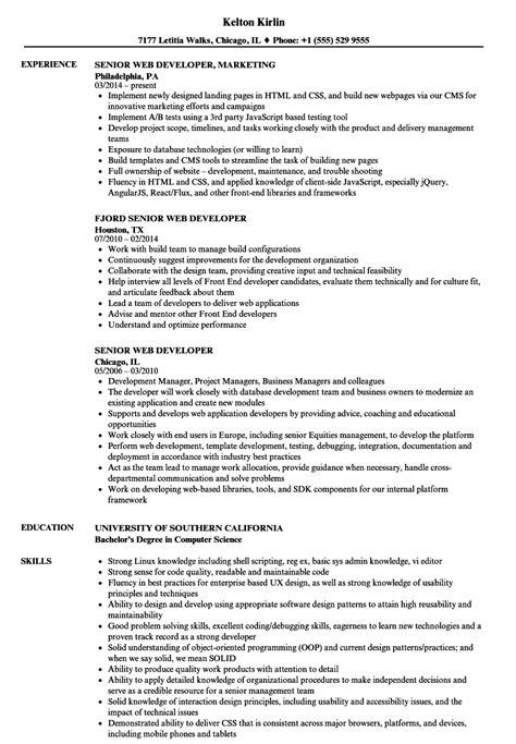 senior web developer resume template senior web developer resume sles velvet
