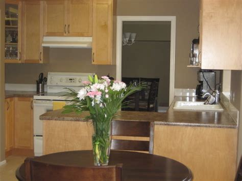 Kitchen Backsplash Ideas With Cream Cabinets what counters flooring backsplash go with light maple