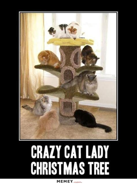 Dog Lady Meme - crazy cat lady memes funny crazy cat lady pictures