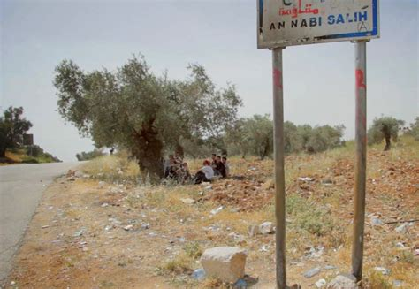 film nabi saleh even though my land is burning about
