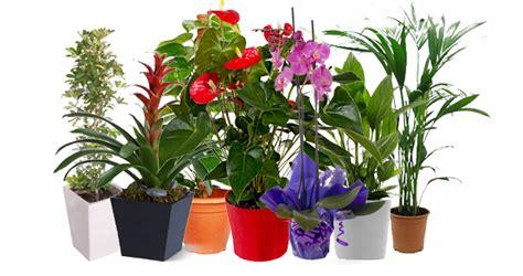 viveros de plantas en madrid