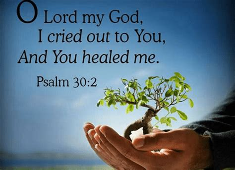 Scriptures On Healing And Comfort by 130 Bible Verses About Healing The Sick