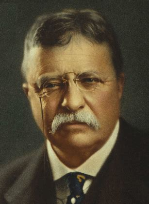 biography theodore roosevelt theodore roosevelt biography presidential pet museum