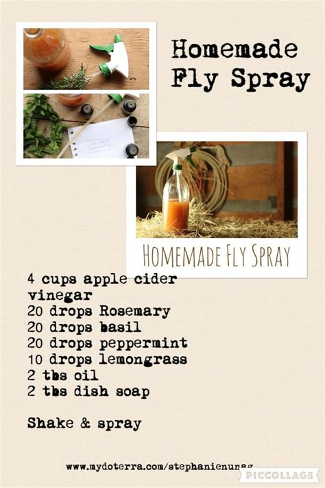 diy setting spray at home fly repellent spray for horses