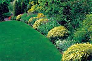 designing with ornamental grasses georgia gardening web articles
