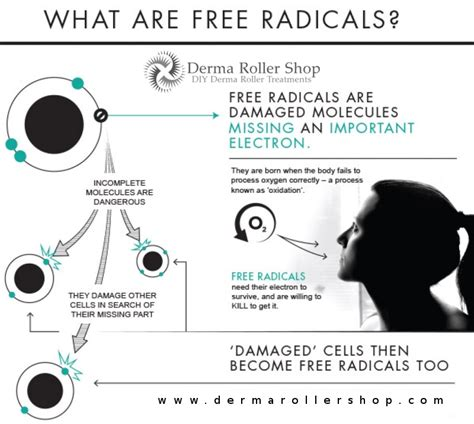 what are what are free radicals
