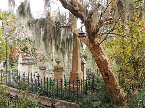 natalie brown charleston sc 61 best images about low country of ga and sc on pinterest