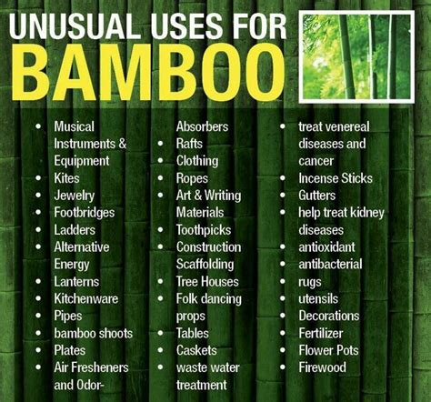 benefits  bamboo plant  grows faster  trees