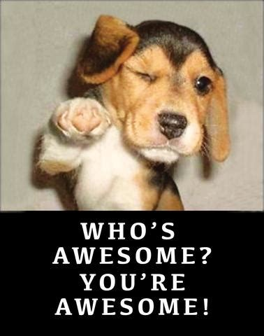 whose awesome you re awesome who s awesome you re awesome ephemera print 8 x 10