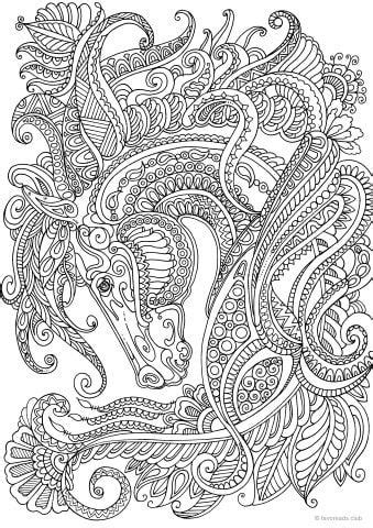 graceful horse horse coloring pages animal coloring
