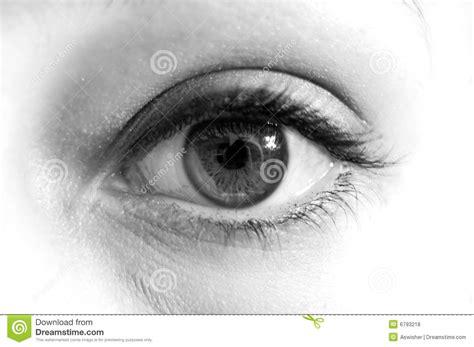 imagenes en blanco y negro de ojos ojo blanco y negro fotos de archivo libres de regal 237 as