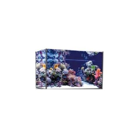 acquario vasca vasca acquario artigianale professionale punto tropicale