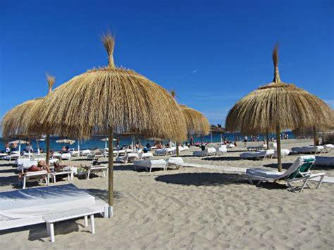 bali beach club ibiza restaurant reviews phone number