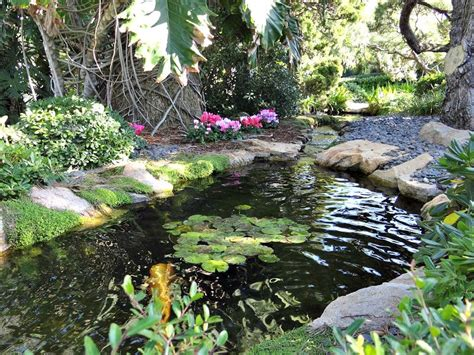 Encinitas Meditation Garden by All About Encinitas California At Home In Carlsbad