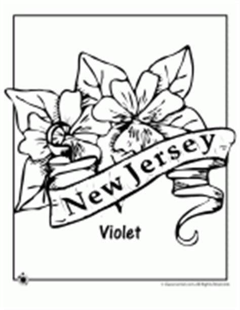 new york state flower coloring page