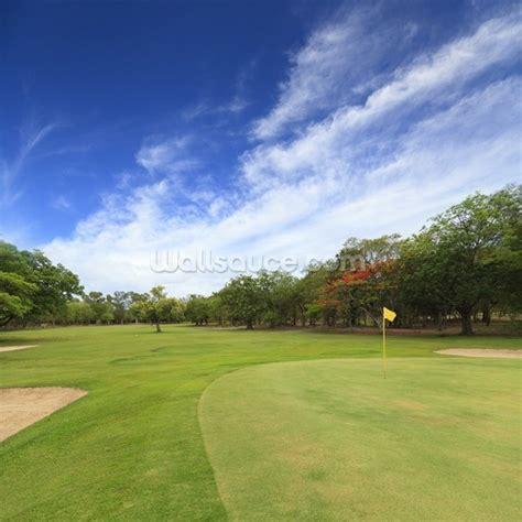 golf wall murals golf course
