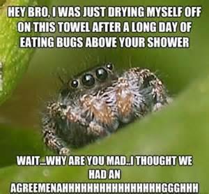 the best of the quot misunderstood spider quot meme 19 pics