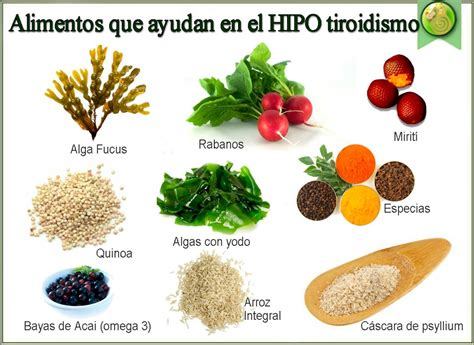 hipotiroidismo alimentos