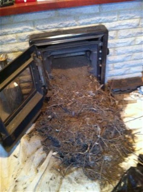Burning Unseasoned Wood In Fireplace by Rc Engineering Sweeping Gallery