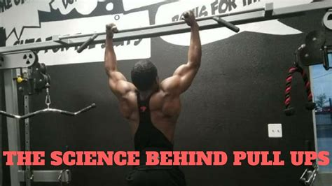 tutorial dance pull up the truth about pull ups chin ups full breakdown
