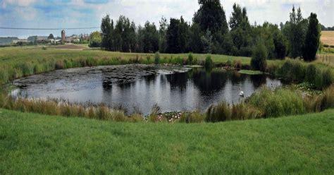 the white of pond bank books owner floods field where hit children s tv show