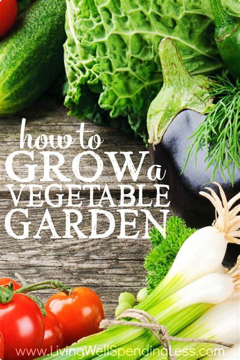 how to grow a vegetable garden vertical 4 living well