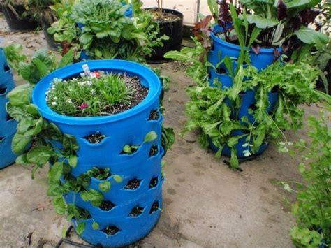 diy barrel planter the owner builder network