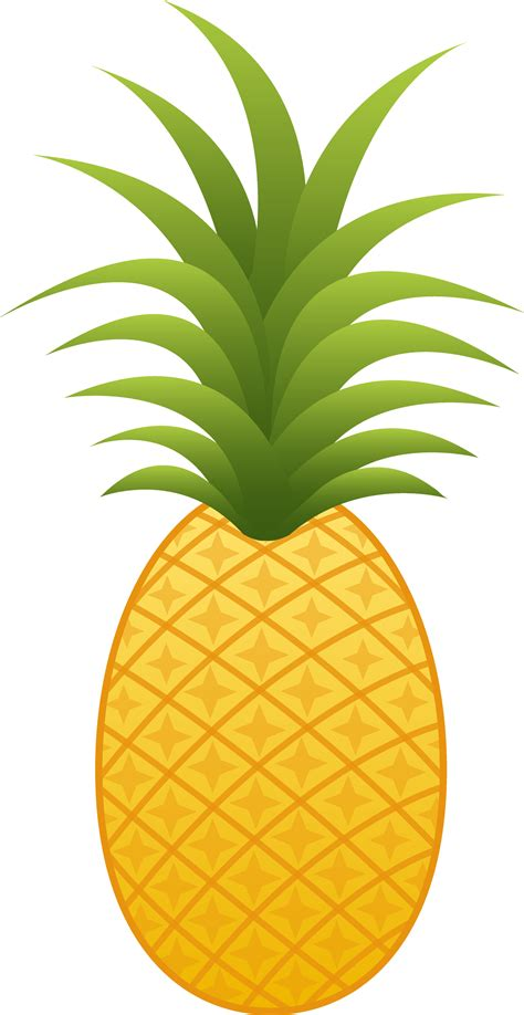 Pineapple Top pineapple top clipart clipground