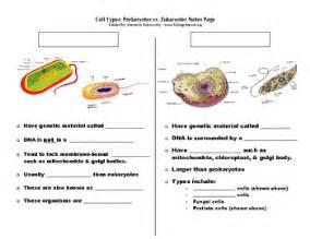cell types prokaryote vs by marianne dobrovolny