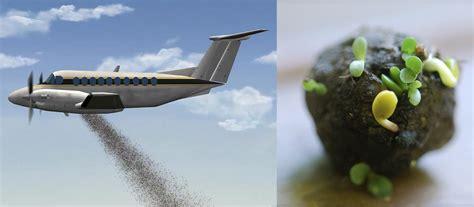 la semilla piloto tailandia bombarde 243 con semillas un bosque deforestado revista el federal