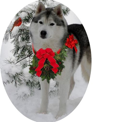 siberian husky christmas ornament log houses pinterest