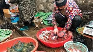 wabah corona virus china larang total perdagangan satwa