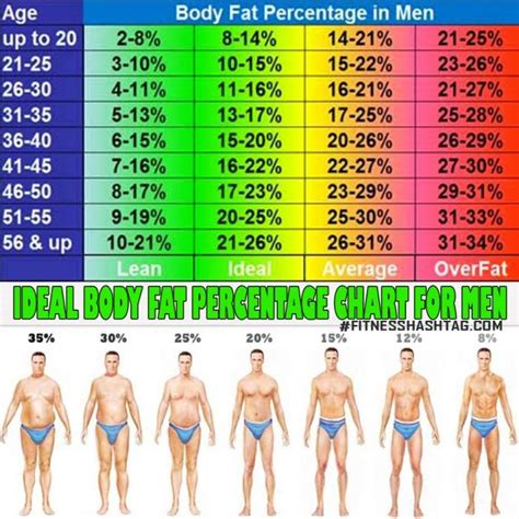 healthy fats percentage ideal percentage chart for what is yours