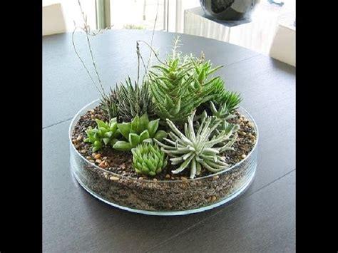 diy florarium  tillandsiey florariumterrarium