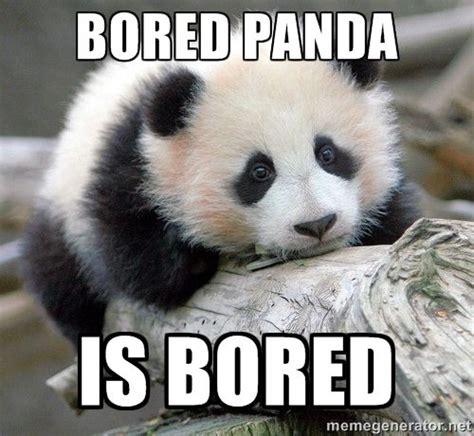 Meme Panda - bored panda meme image memes at relatably com pandas