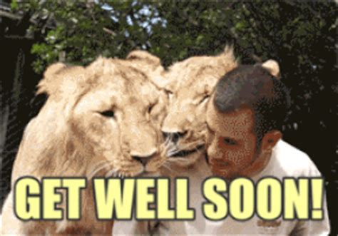 Meme Get Well Soon - feel better get well gif find share on giphy