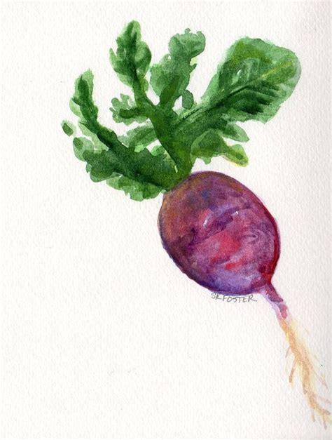Radish Serie 22 best images about fruits and vegetables on doing the splits pumpkins and