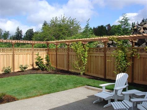 fence pergola designs perhaps the grapes and the raspberries can the same growing space garden