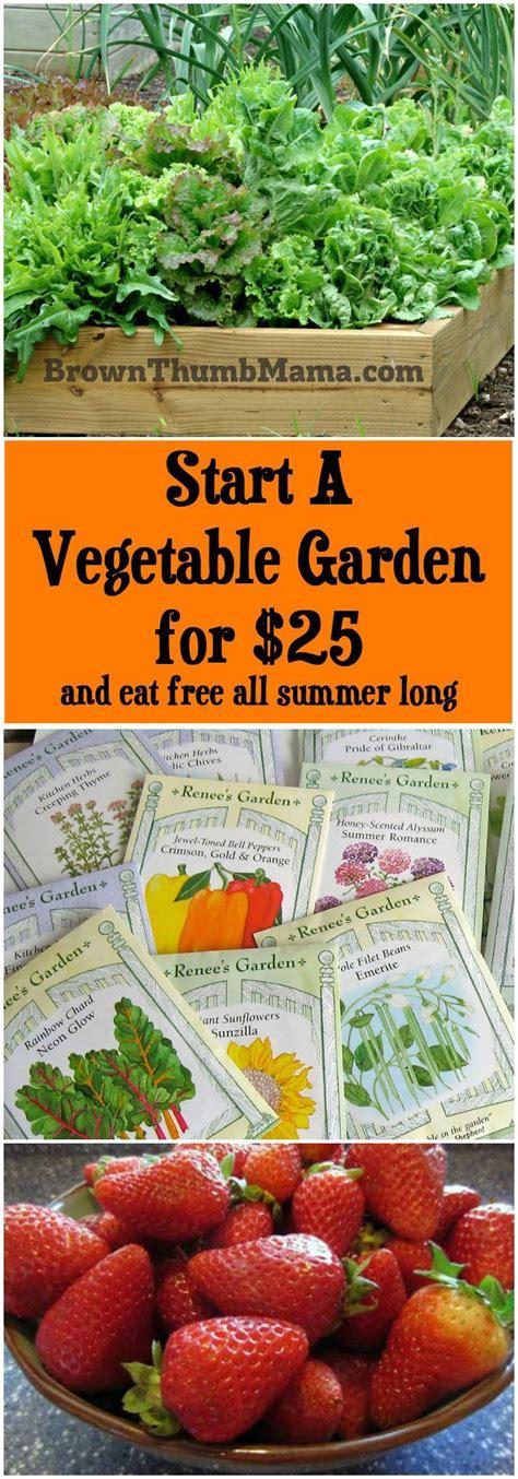 25 B 228 Sta Starting A Vegetable Garden Id 233 Erna P 229 Pinterest Starting A Vegetable Garden