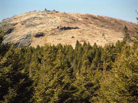 photo gallery black balsam knob hiking