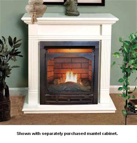 Mini Gas Fireplace by Gas Fireplaces Free Shipping Efireplacestore