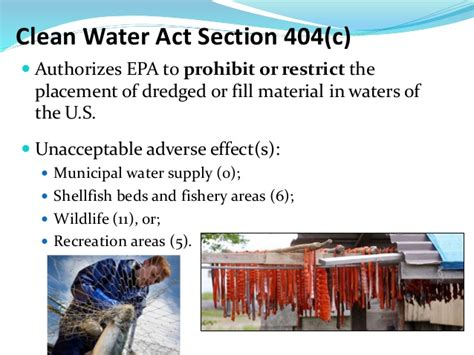 section 404 of the clean water act bristol bay arlington cafe scientifique may 6
