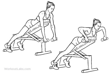 bench rows dumbbell incline bench rows workoutlabs