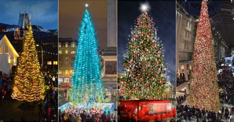how cardiff s christmas tree compares to other major