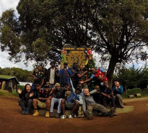 best safari tour operators choosing tour operator for safari and mount kilimanjaro hike